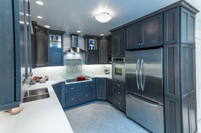 Cobalt Cool Kitchen Transitional Kitchen St Louis By NEXT Project Studio