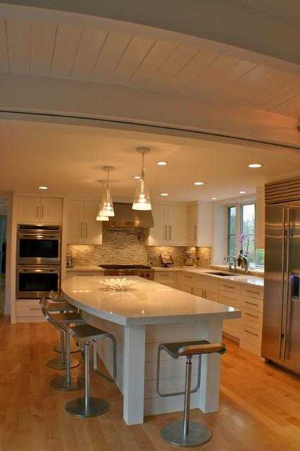 Cohasset III contemporary-kitchen