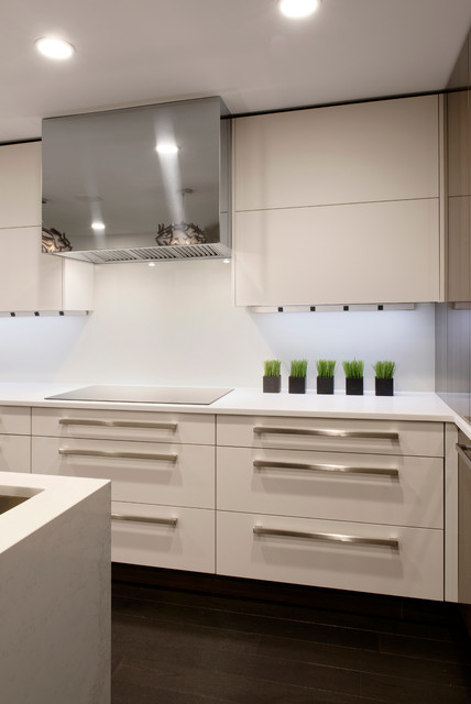 Columbia maryland contemporary kitchen design contemporary kitchen baltimore by - Kitchen designers in maryland ...