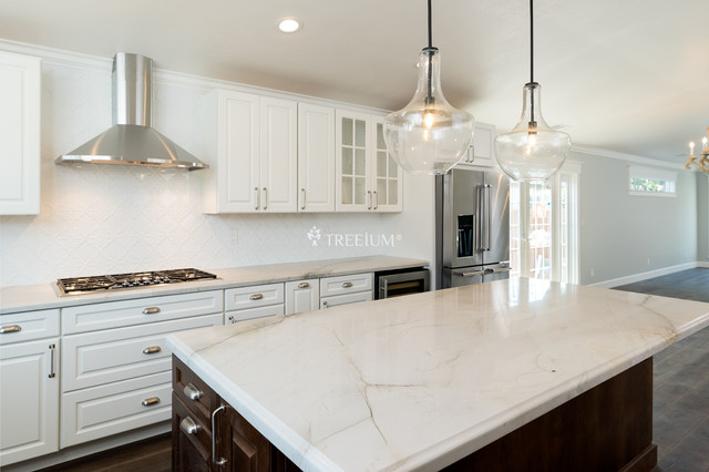 Complete Kitchen Remodel By Treeium Inc