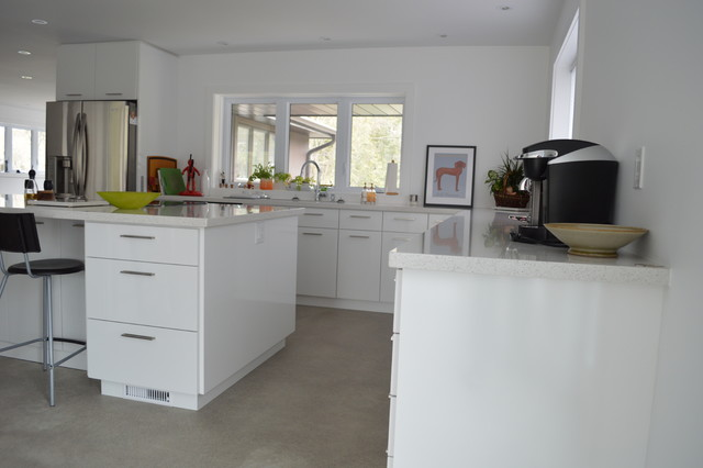 Complete Renovation Inside and Out modern-kitchen