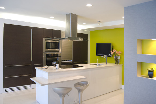 Example Of A Trendy Galley Kitchen Design In DC Metro With Paneled Appliances Flat