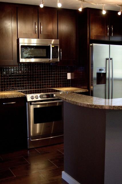 Condo Kitchen Remodel - Modern - Kitchen - Austin - by Adentro Designs
