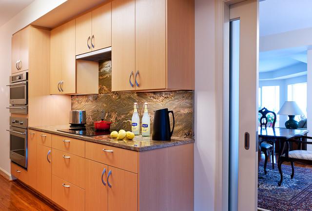 Condo Remodel, Alexandria VA contemporary-kitchen
