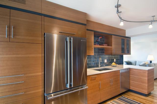 Condo Renovation modern-kitchen