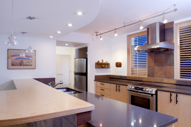 condo renovation contemporary-kitchen