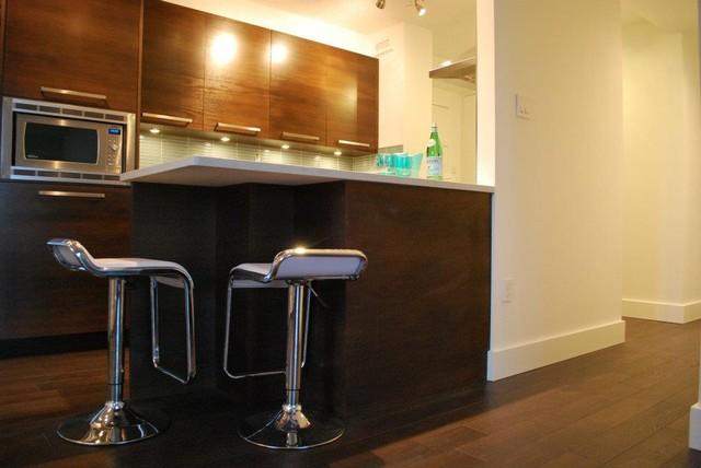condo renovations contemporary-kitchen