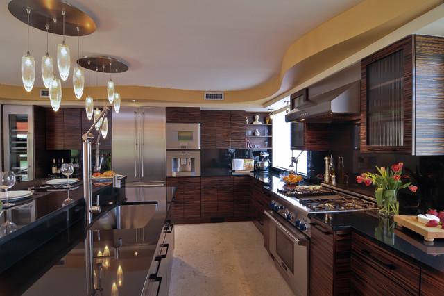 Contemporary Black Kitchen contemporary-kitchen