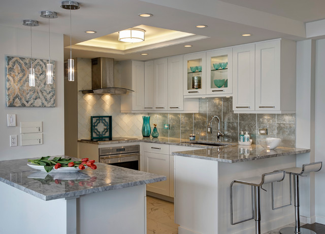 Contemporary Condo Kitchen Conversion Chicago Il Transitional Kitchen Chicago By