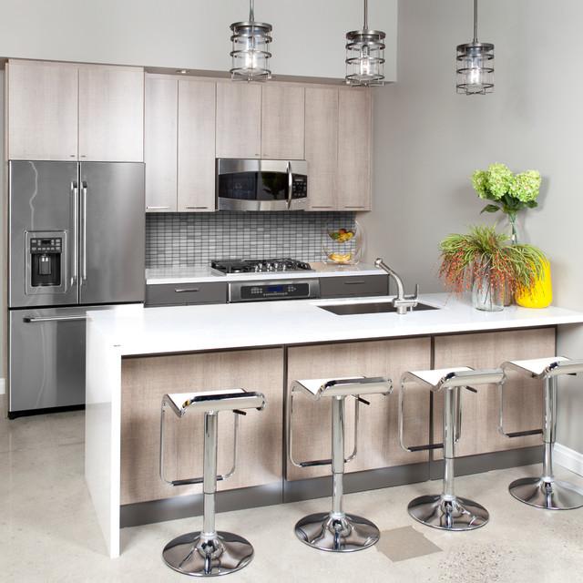 Contemporary Condo Style Kitchen