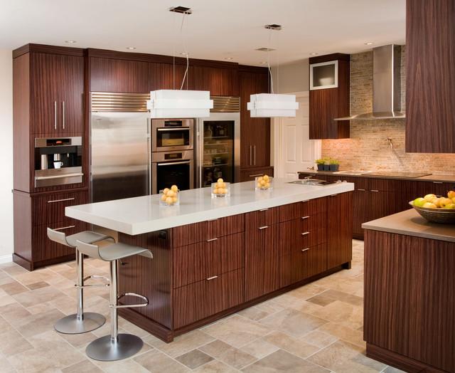Contemporary dream kitchen contemporary kitchen for Houzz contemporary kitchens