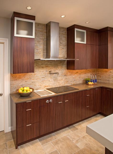 CONTEMPORARY DREAM KITCHEN contemporary-kitchen