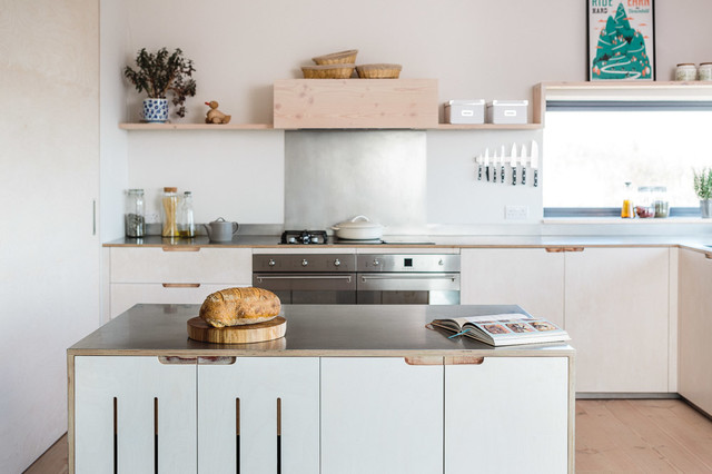 contemporary eco kitchen in the cotswolds - scandinavian - kitchen