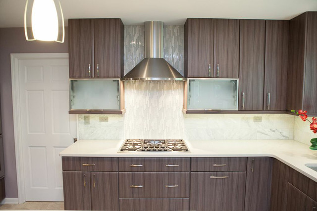 Contemporary Elegance In Barrington Contemporary Kitchen Chicago By Advance Design
