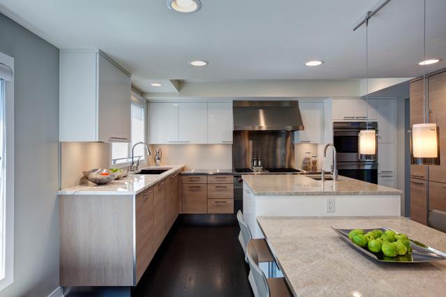 Contemporary Flossmoor Kitchen contemporary-kitchen