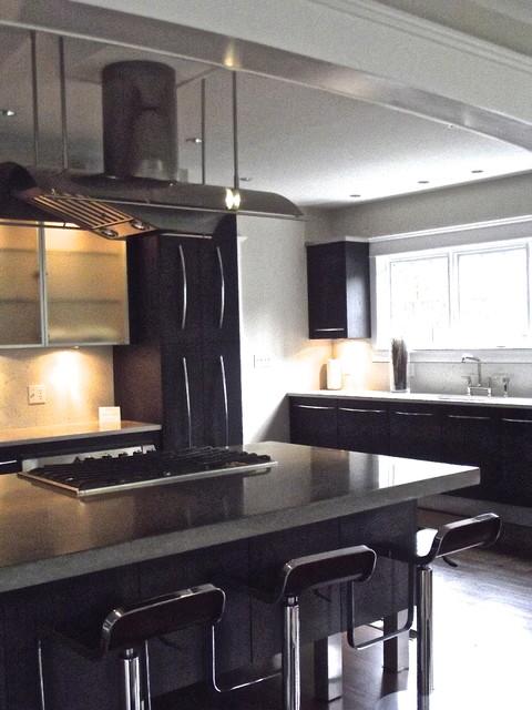 Contemporary house job photos contemporary-kitchen