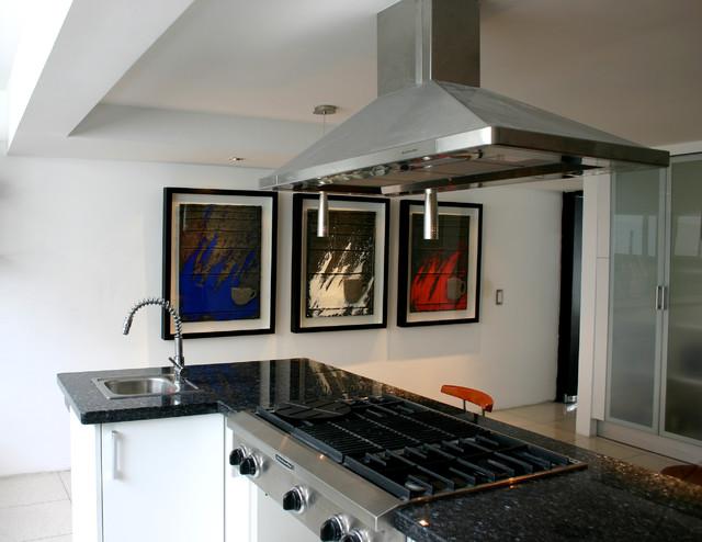 Contemporary Kitchen   ART Contemporary Kitchen