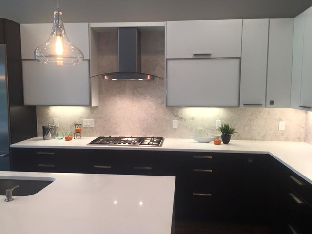 contemporary kitchen cubitac cabinetry contemporary