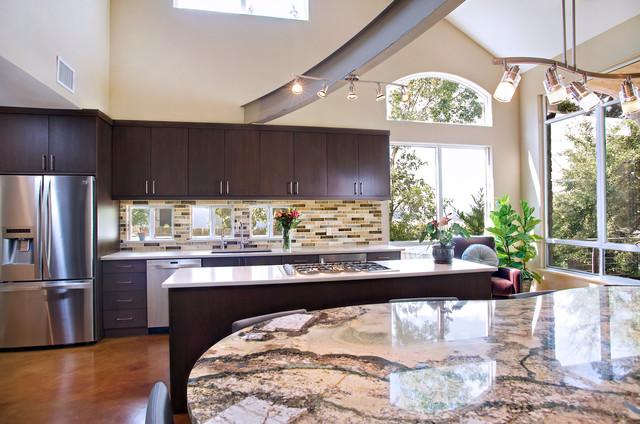 Contemporary Kitchen - Dark Maple Slab Door - Modern ...