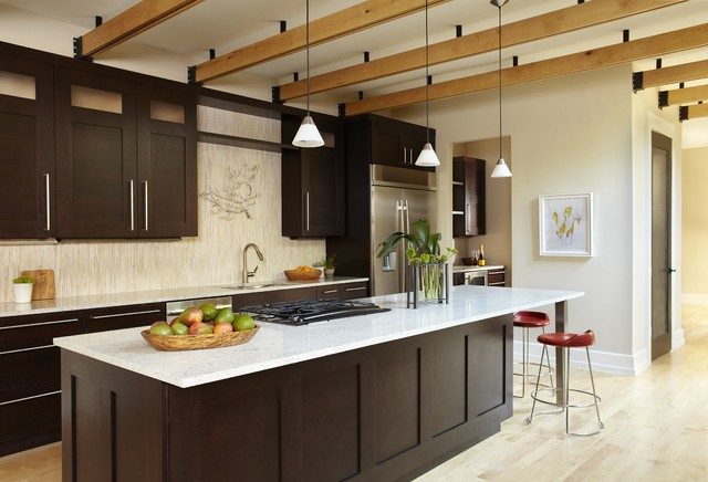 dark brown shaker kitchen cabinets kitchen contemporary kitchen dallas by 290