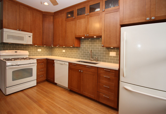 Contemporary kitchen for Chicago kitchen cabinets