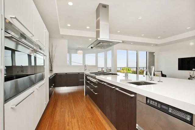 Contemporary kitchen design contemporary-kitchen