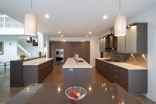Contemporary kitchen contemporary kitchen detroit for Kitchen design unlimited