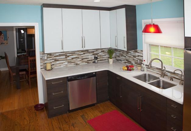 Contemporary Kitchen - Glass & Veneer modern-kitchen