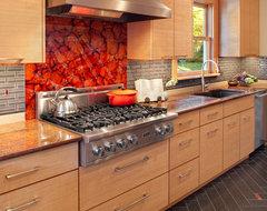 Grant Park Kitchen contemporary-kitchen