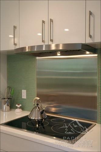 Contemporary Kitchen Remodel Portland, Oregon contemporary-kitchen