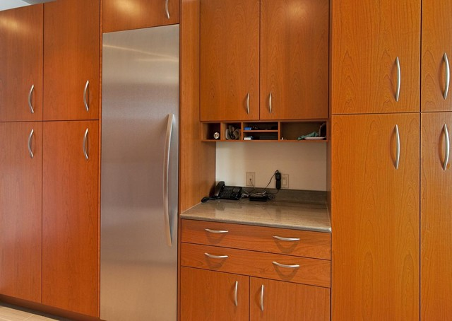 Contemporary Kitchen Remodeling | Better Kitchens contemporary-kitchen