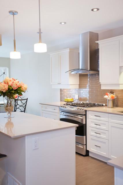 Contemporary Kitchen Reno contemporary-kitchen