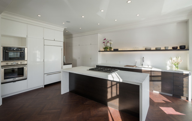Parisian Modern Flat - Pacific Heights contemporary-kitchen