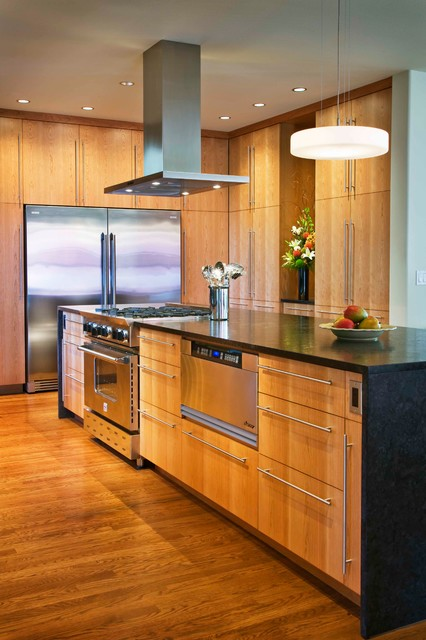 Contemporary kitchen contemporary kitchen seattle for Modern kitchen cabinets seattle