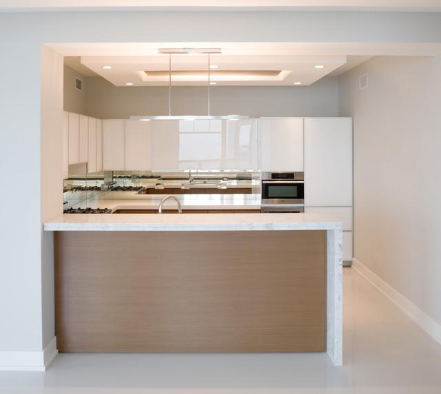 Streeterville Condo, Chicago Condo modern-kitchen