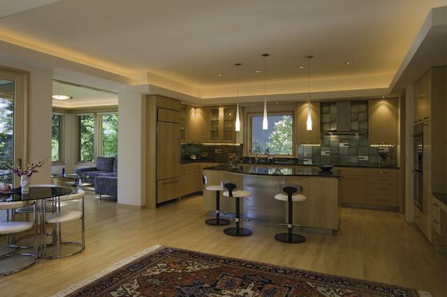 Contemporary on Medicine Lake contemporary-kitchen