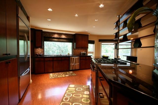 Contemporary renovation contemporary-kitchen
