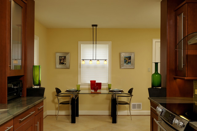 Contemporary Small Kitchen in McLean contemporary-kitchen