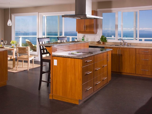cordova bay, view, deck, pool, reclaimed, heritage fir floors, contemporary-kitchen