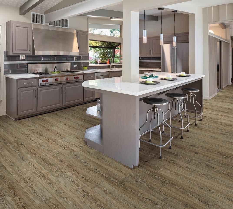 Cortec Plus Contemporary Kitchen
