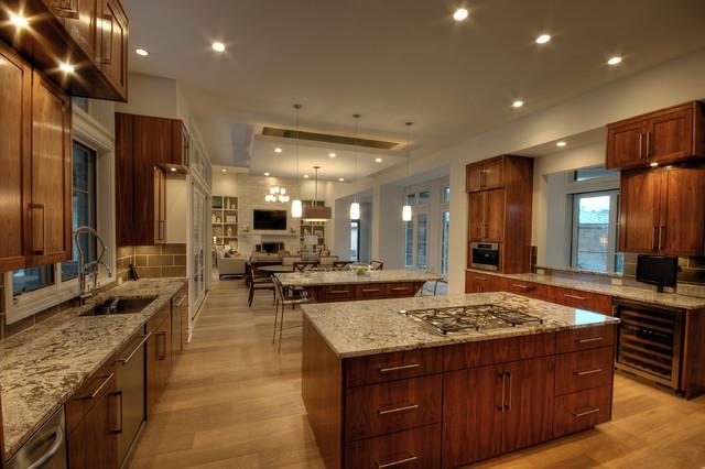 Cortona Kitchen contemporary-kitchen