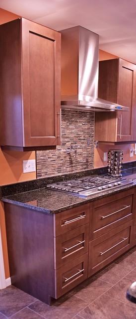 Craftsman Kitchen transitional-kitchen