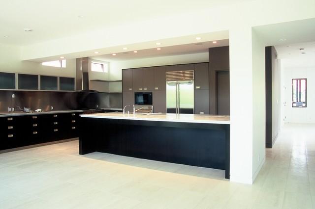 Crescent Heights Laneway Residence - Kitchen modern-kitchen