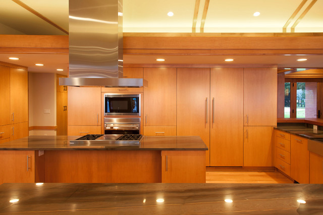 Cukic residence contemporary-kitchen