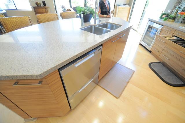 Cukier Kitchen contemporary-kitchen