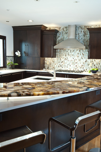 Culinary Artistry contemporary-kitchen