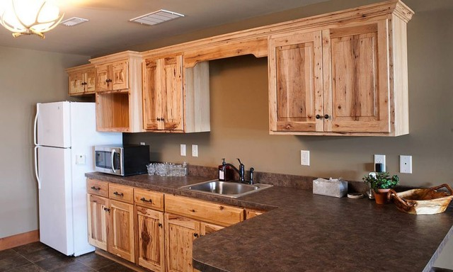 Amish kitchen cabinets kitchen design ideas for Amish kitchen cabinets