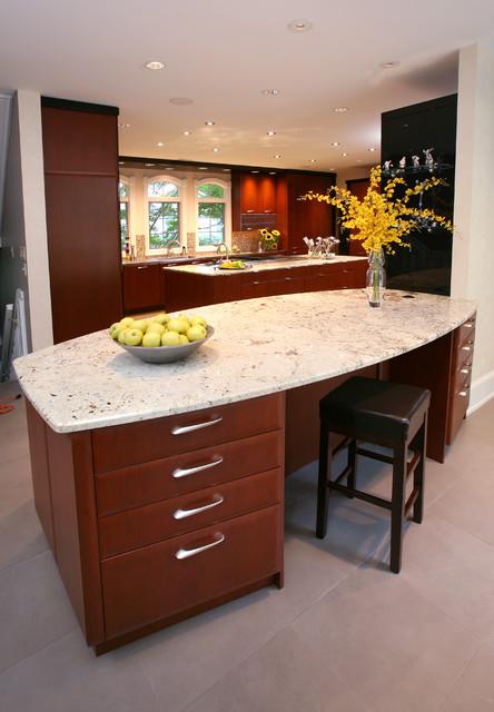 Custom Contemporary Kitchen contemporary-kitchen