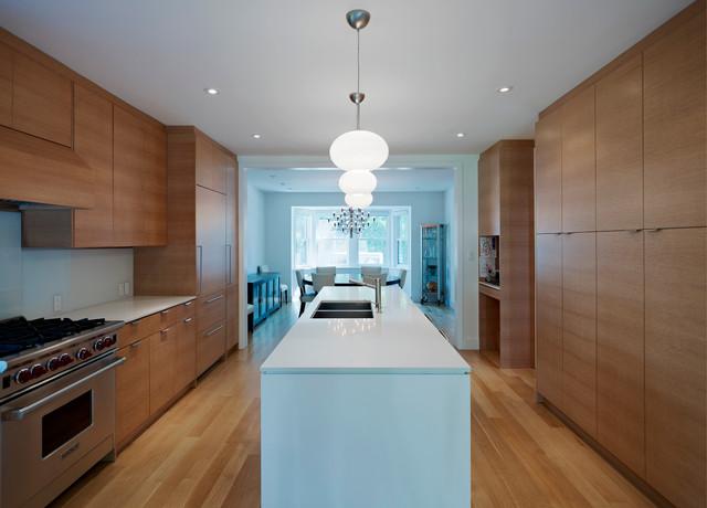 Custom Toronto Renovation modern-kitchen