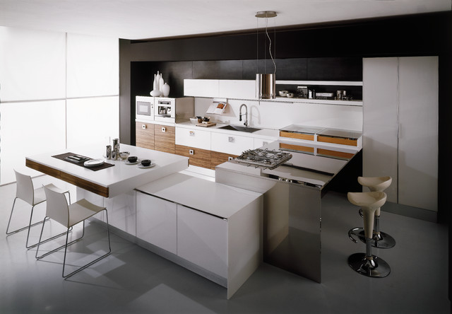 Dali Kitchen by Aran Cucine contemporary-kitchen